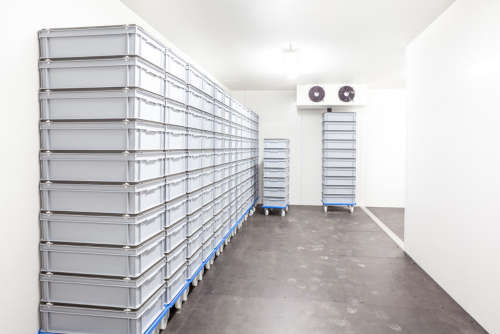 Mantenimiento preventivo de cámaras frigoríficas